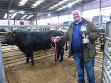 Christmas Show & Sale of Young Bulls, OTM's and Cows 2020